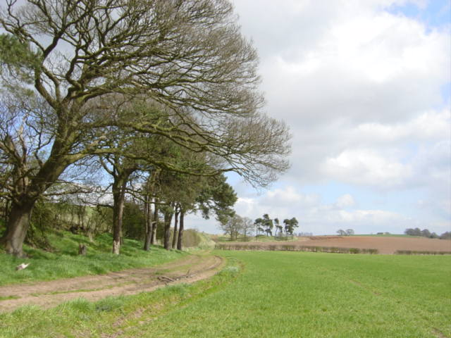 Watling Street near Old Pale, Cheshire