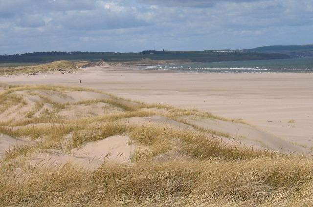 Sand Dunes on Goswick Beach