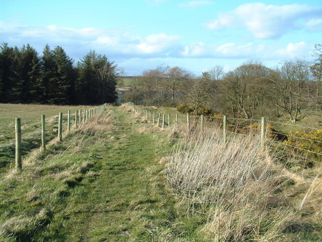 Footpath from Radernie