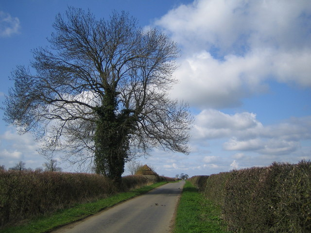 Chackmore: Unnamed lane to Bufflers Holt