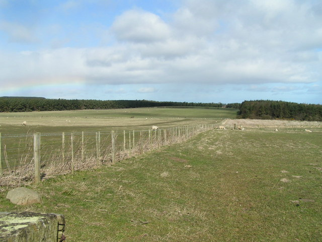 Cross Hill from Wandylaw