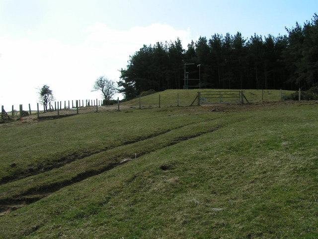 Reservoir above Wandylaw