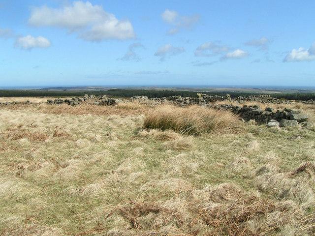 Sheepfold near Snowdon's Fold