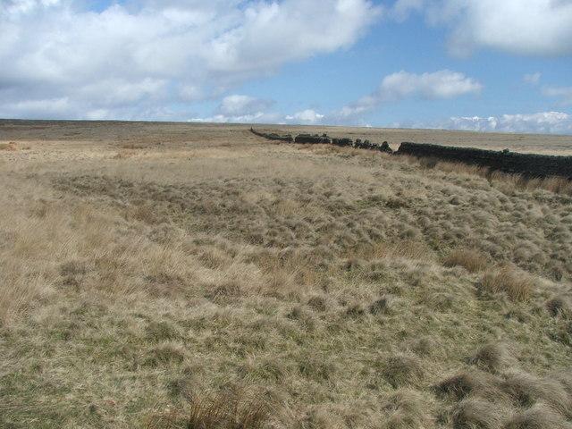 Dry stone wall on Skipton Moor.