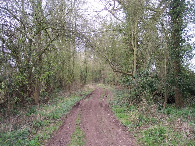 Bridleway to Sutton St. Nicholas