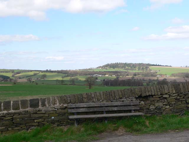 Seat on Hermit Hill Lane, near junction with Cliffe Common Lane