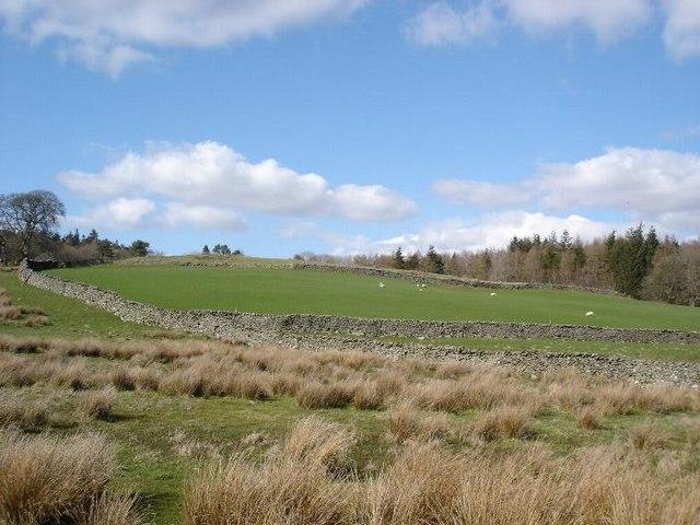 Stone boundaries at Pentrefoelas
