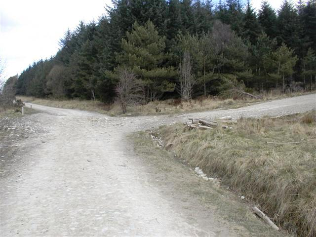 Forest Road Junction, Cropton Forest