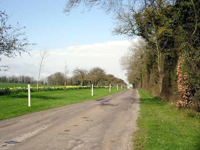 Driveway to West Stoke Farm