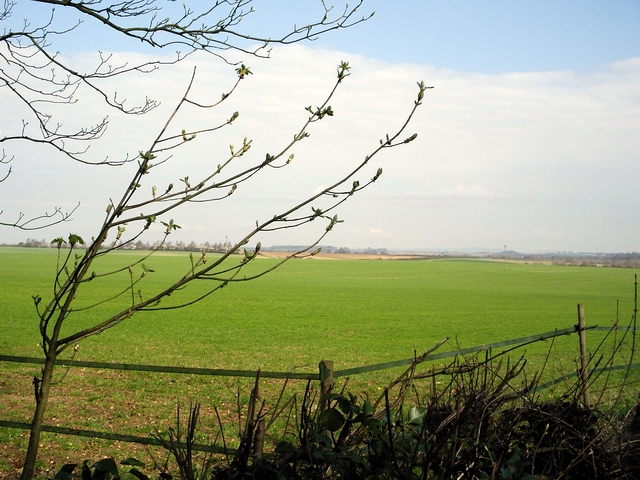 Field west of Old Stoke Road