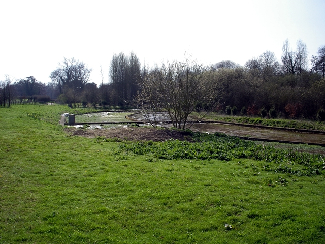 Watercress beds on Hunton Lane