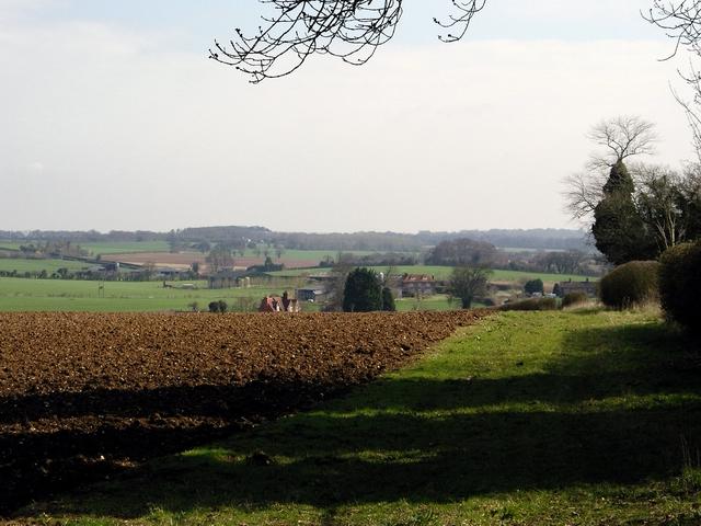 Field north of Hunton