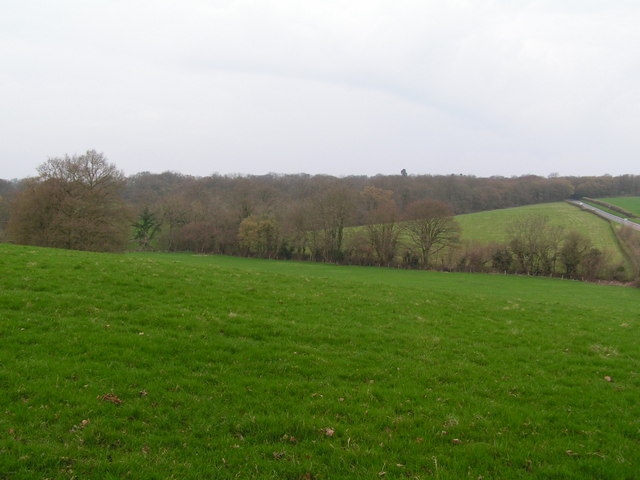 Woodlands & Fields