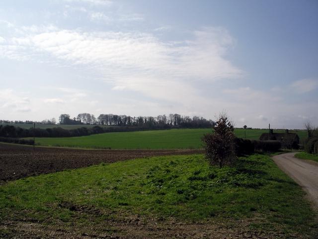 Hunton Down Lane and Norsebury Ring