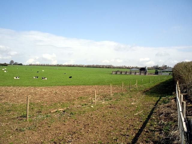 Hunton Down Farm