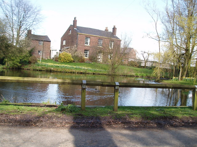 Village Pond Higher Whitley