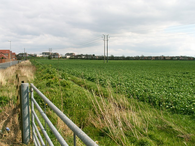 Farmland on Water Lane, Mansfield