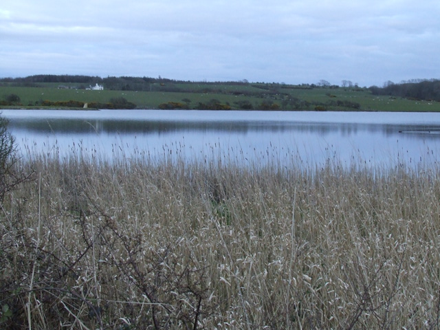 View of Llyn Llywenan