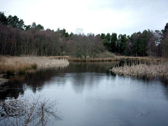 Crannoch Hill Loch by Cullen