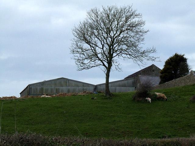 Farm buildings at Bodgynda