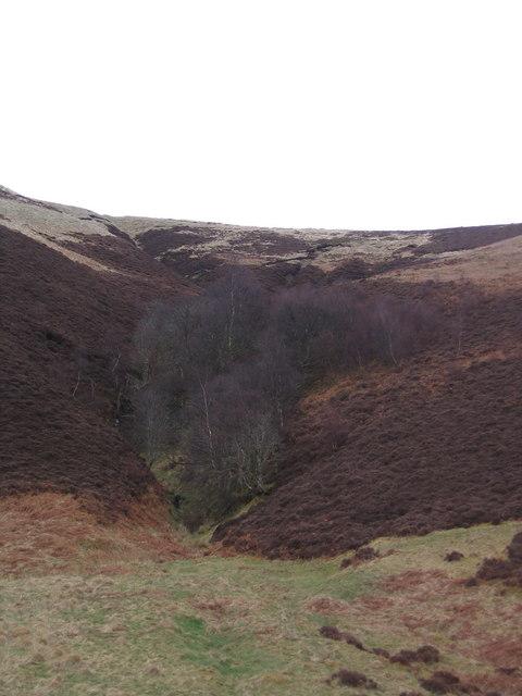 Dewar Hill