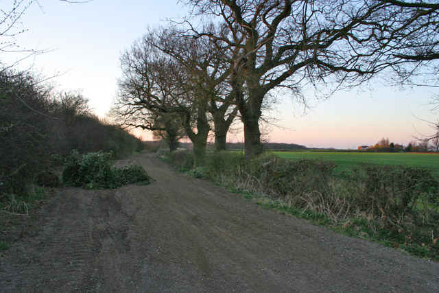 Sewstern Lane near Muston and Stenwith