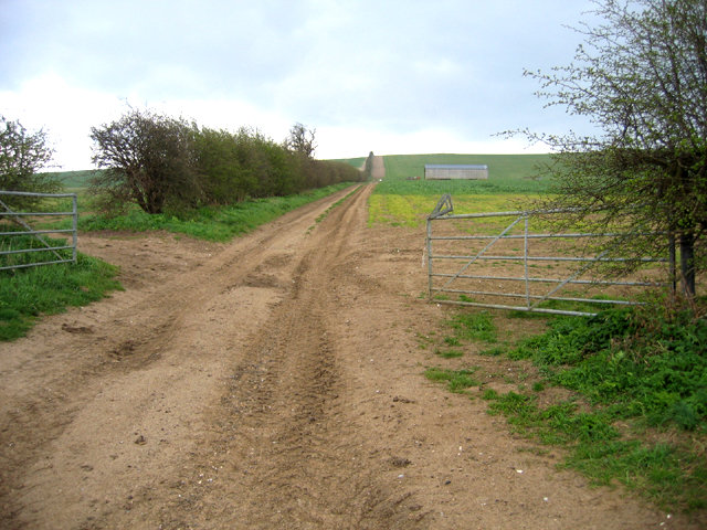 Farm track from Grange Road, Ickleton, Cambs