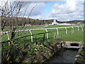 SD3779 : The final straight at Cartmel by John Berry
