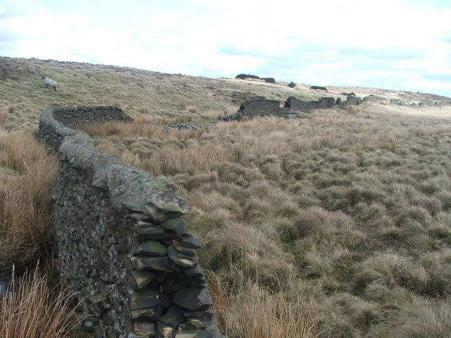Dry Stone Walling on Skipton Moor.