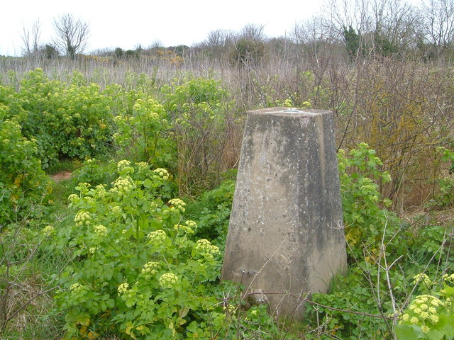 Trig point on Walls Hill