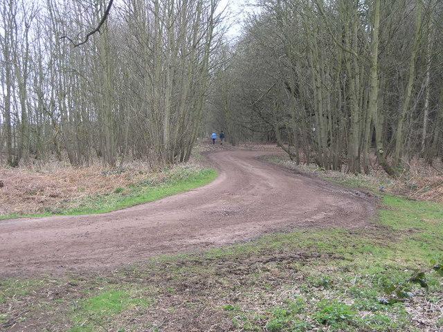 Footpath to Elkesley