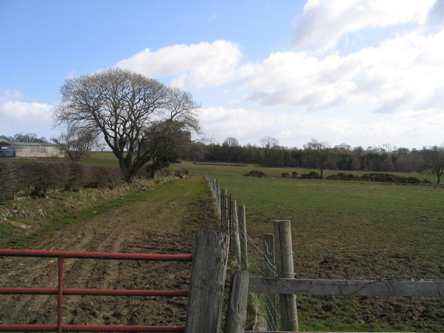 Farmland at Low Healy Cote