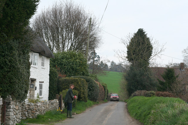 Winsham: near East Farm, Whatley