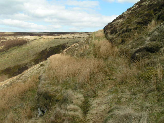 Zigzag path, Combs Moss