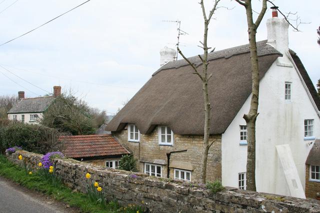 Thorncombe: cottages near Stony Knaps