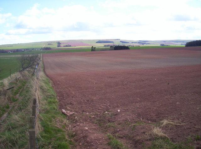 Fields and Burn near Pittarrow