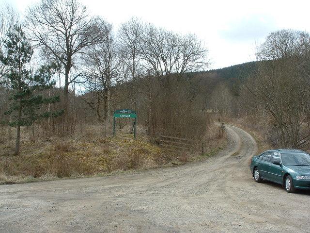 Ladyurd forestry track