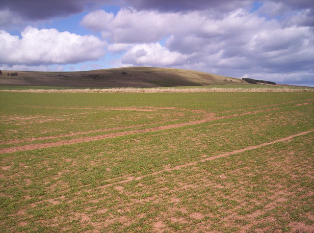 Field with Knock Hill Behind