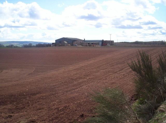Bankhead Farm
