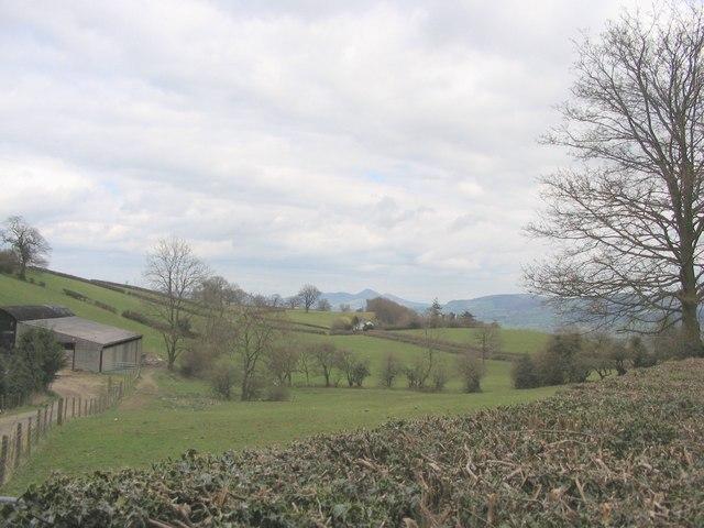 Verniew Farm