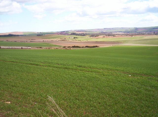 Fields southeast of Kinkell