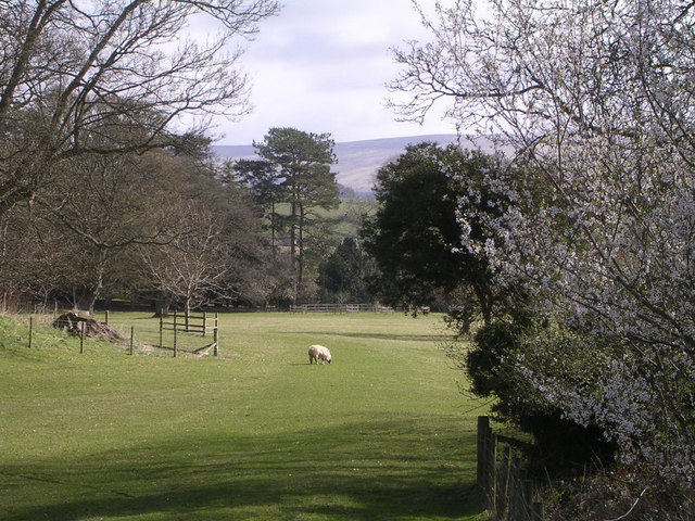 Grounds of Nunwick Hall