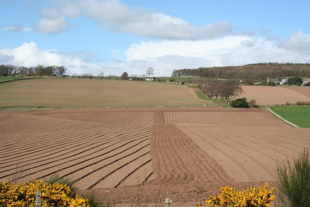 Freshly ploughed!