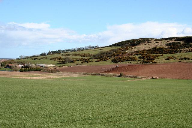 Newton Hill