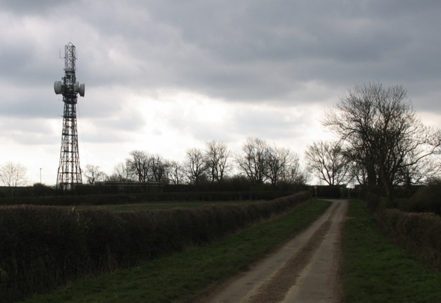 Radio mast and trees