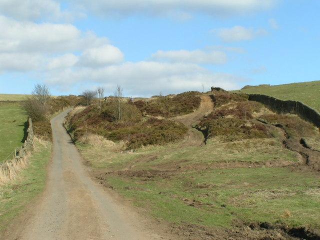 Cowlow Lane
