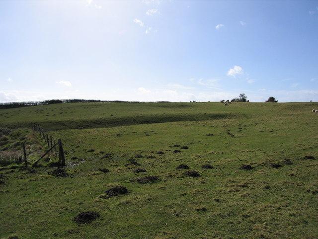 The lost village of Arlescott