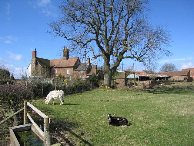 Arlescott Farm near Much Wenlock