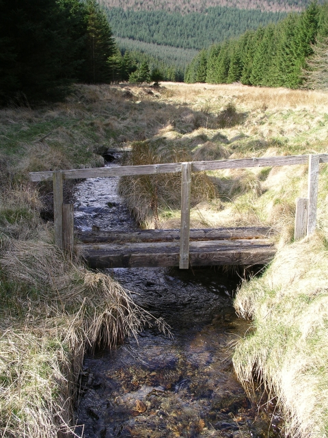 Footbridge, Walker Burn
