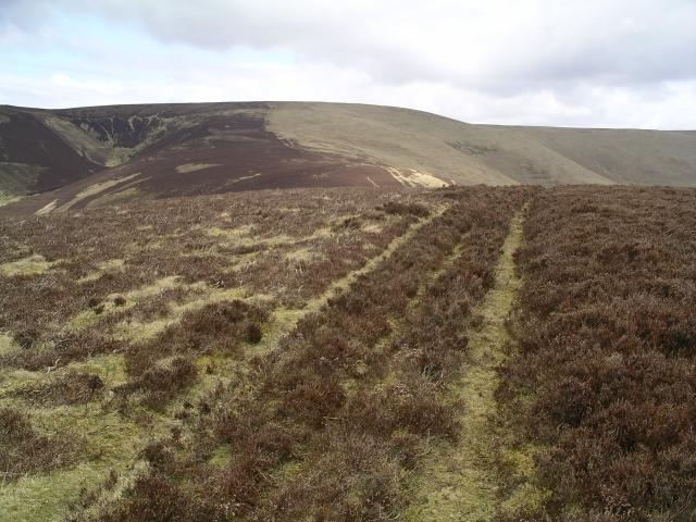 Summit track, Scawd law